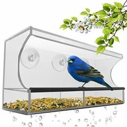 Acrylic Rectangular Window Bird Feeder With Strong Suction Cups And Seed Tray For Home Rs 799 Piece Id 23004514933