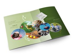 Multi Color Printing Services, Location: Pan India