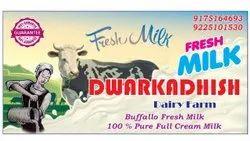 Buffalo Milk