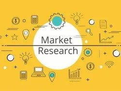 Market Research Services, in Pune