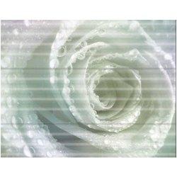 Glossy Asian Granito Wall Tiles Ankara Rose, Size: 450x300 mm, Thickness: 20 mm