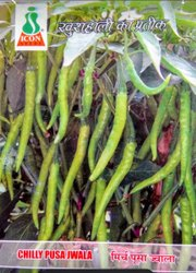 Natural Pusa Jwala Chilly Seed, Packaging Size: 100gm
