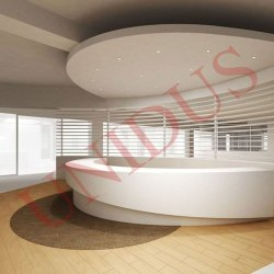 False Ceiling Interior Designing Service