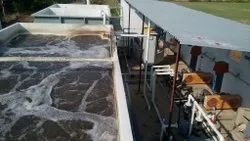 Domestic Wastewater Mixed Bed Bio Reactor Grey Water Treatment Plant, For Reuse For Flushing,Gardening