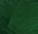PXP Velvet Dyed Fabric