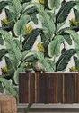 Palm leaf wallpaper