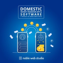 1-12 Month Domestic Money Transfer Application Software Service
