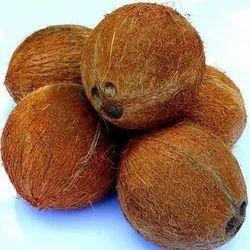 Whole Husked Coconut, Coconut Size: Medium