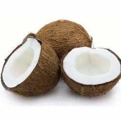 A Grade Semi Husked Coconut, Coconut Size: Large