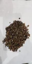 Dry Makoy Phal