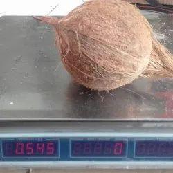 Fresh Coconut Supplier