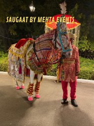 Wedding Horse Service, Local
