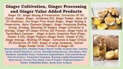 Ginger Processing Project Reports Consultancy