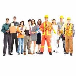 Labour Contractors, Local