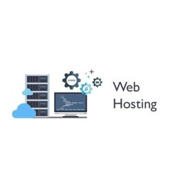 Static Website Domain Hosting Service, With Online Support
