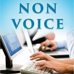 Non Voice Data Entry Project