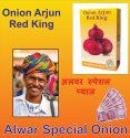 ARJUN RED KING ONION SEEDS