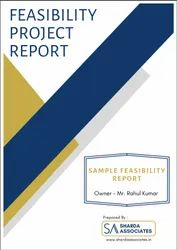 Online 3-7 Days Feasibility And Detailed Project Report, Pan India