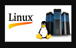 Linux Server Hosting Services, in Pan India