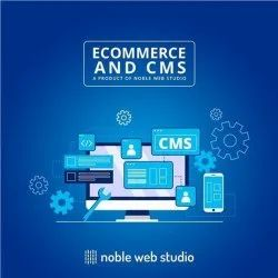 Ecommerce And CMS Software Service