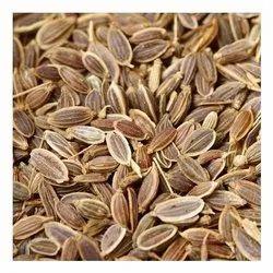 Brown Dill Seed, Packaging Type: PP Bag, Packaging Size: 25 Kg