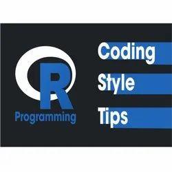 R Programming Development Services