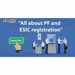 PF And ESI Registration Services