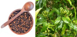 Kerala Clove Whole 1Kg Natural Cloves, Packaging Size: 10 Kg