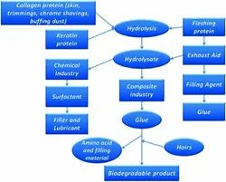 Glue From Leather Waste Project Reports Consultancy