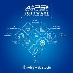 Best AEPS Software Company