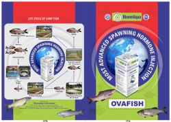 OVAFISH - Fish Breeding Hormone Injection, Bhoomiaqua International, Packaging Size: 10ml