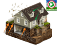 Commercial Herbal Based Home Termite Treatment