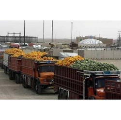 Fruits And  Vegetables Transportation Services