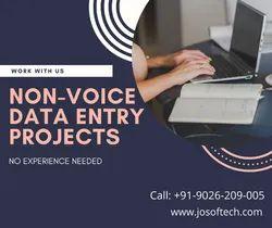 20 Days Company Data Entry Projects Guntur, BPO