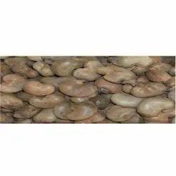 Ratnagiri Natural Raw Cashew Nuts