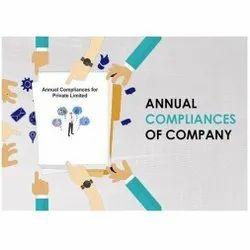 Individual Consultant Private Limited Annual Company Compliance Service
