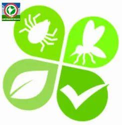 Monthly Residential Pest & Termite Control Service, In Mumbai