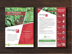 1 Week Brochure Designing Service