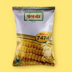 Paras-7474 Hybrid Maize Seeds, For Sowing