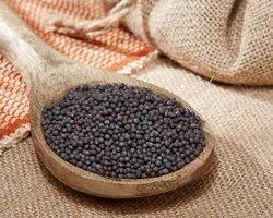 100 Kg Black Mustard Seeds