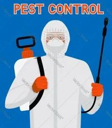 Cockroach Commercial Organic Pest Control