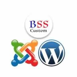 Content Management System Service, Service Location: Pan India