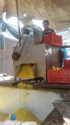 Automatic Tutti Frutti Processing Machine