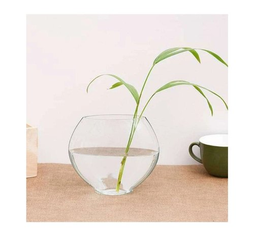 Glass Flower Vases Shape Round Rs 60 Box M S Raj Glass Decorators Id 22956121062