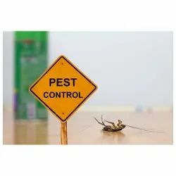 Commercial Fume-based Treatment Household Pest Control