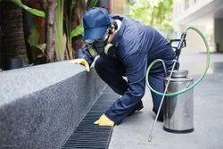 Spray Commercial Pest Control Management Service