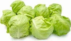 A Grade Tamil Nadu Fresh Green Cabbage, Gunny Bag, 50 Kg