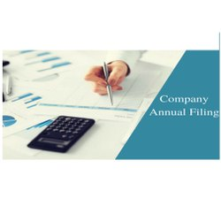 Private Limited Company Annual Return Filing Service, in Pan India, Firm