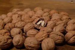 Walnuts, Packaging Type: Sacks, Packaging Size: 25 Kg