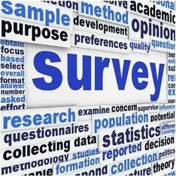 11 Month MCA 21 Survey Data Entry Project, Service Provider